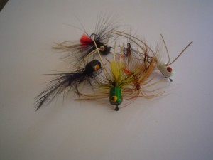 Flies used for Fly Fishing
