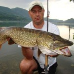 Monster Northern From Loznica